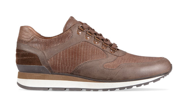 Trainer in brown